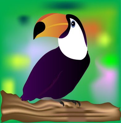 Toucan - Graphic Design with Adobe Illustrator