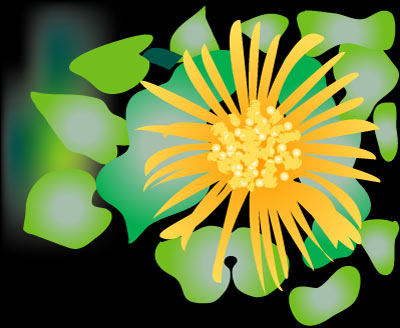 Yellow Flower - Graphic Design with Adobe Illustrator